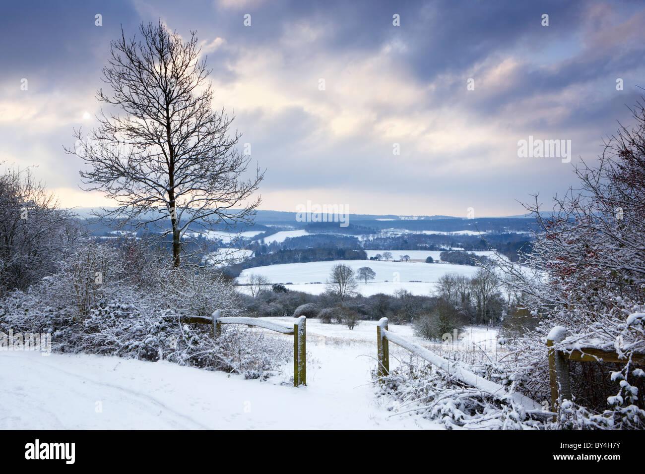 Le soleil commence à percer le nuage par un froid matin d'hiver à Newlands Corner sur l'Albury Photo Stock
