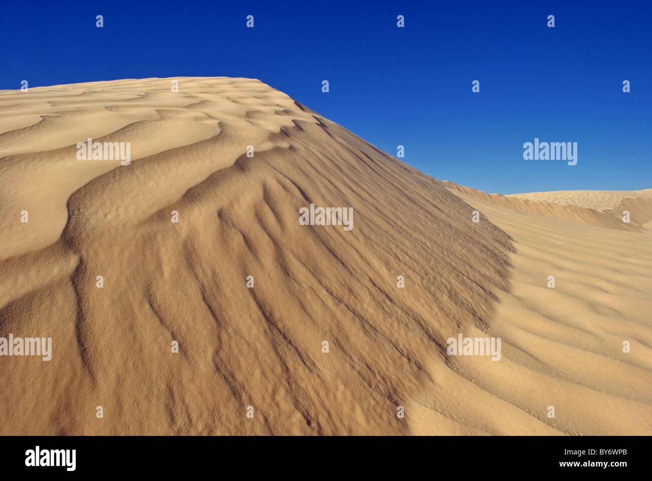 Dunes de sable dans le désert du Sahara (Grand Erg Oriental) près de Douz, Tunisie Photo Stock