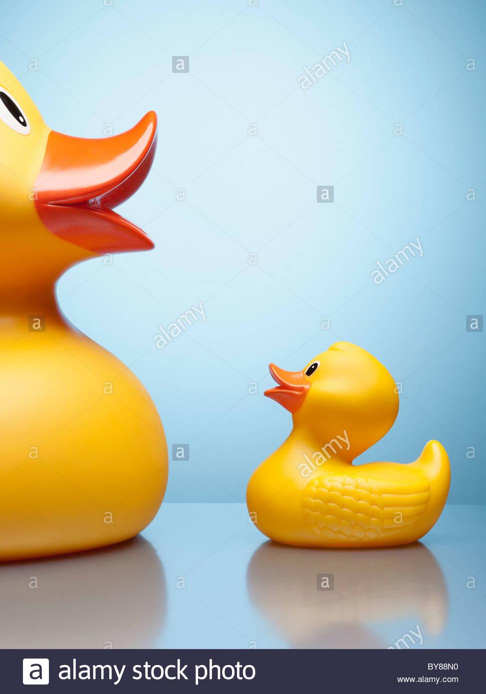 Grands et petits canards en caoutchouc Photo Stock