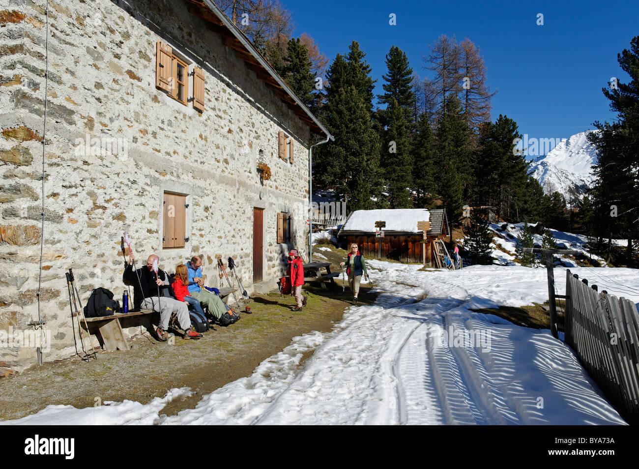Lyvialm alp, le parc national de Stelvio, Val Martello, Vinschgau, dans le Tyrol du Sud, Italie, Europe Banque D'Images