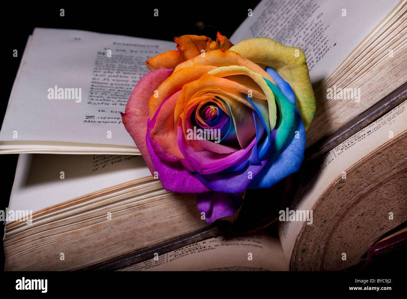 Arc-en-ciel rose et vieux poèmes livre ancien Banque D'Images