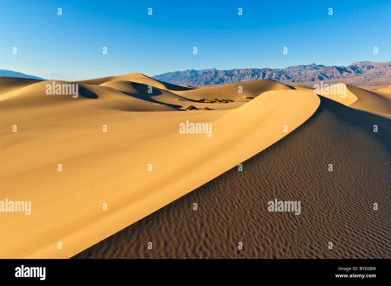 Appartements Mesquite sand dunes Grapevine Mountains de l'Amargosa range Stovepipe Wells Death Valley National Park Californie Banque D'Images