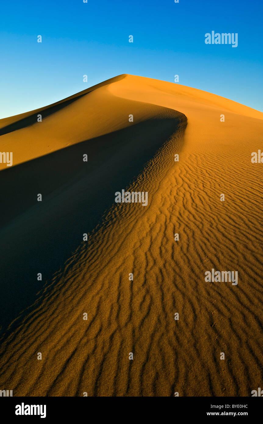 Les ondulations du sable dans les dunes de l'Appartements Mesquite sand dunes, Stovepipe Wells, Death Valley National Park, California, USA Banque D'Images