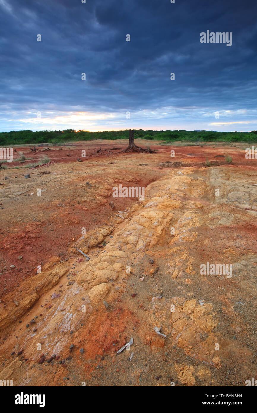 Le sol érodé en Sarigua national park (désert), Herrera province, République du Panama. Banque D'Images