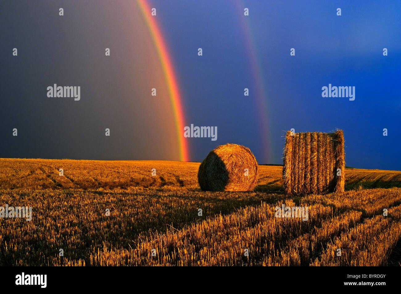 Agriculture - un arc-en-ciel et nuages de tempête au-dessus d'un champ de blé ronde bottes de paille / près de Cypress River, Manitoba, Canada. Banque D'Images