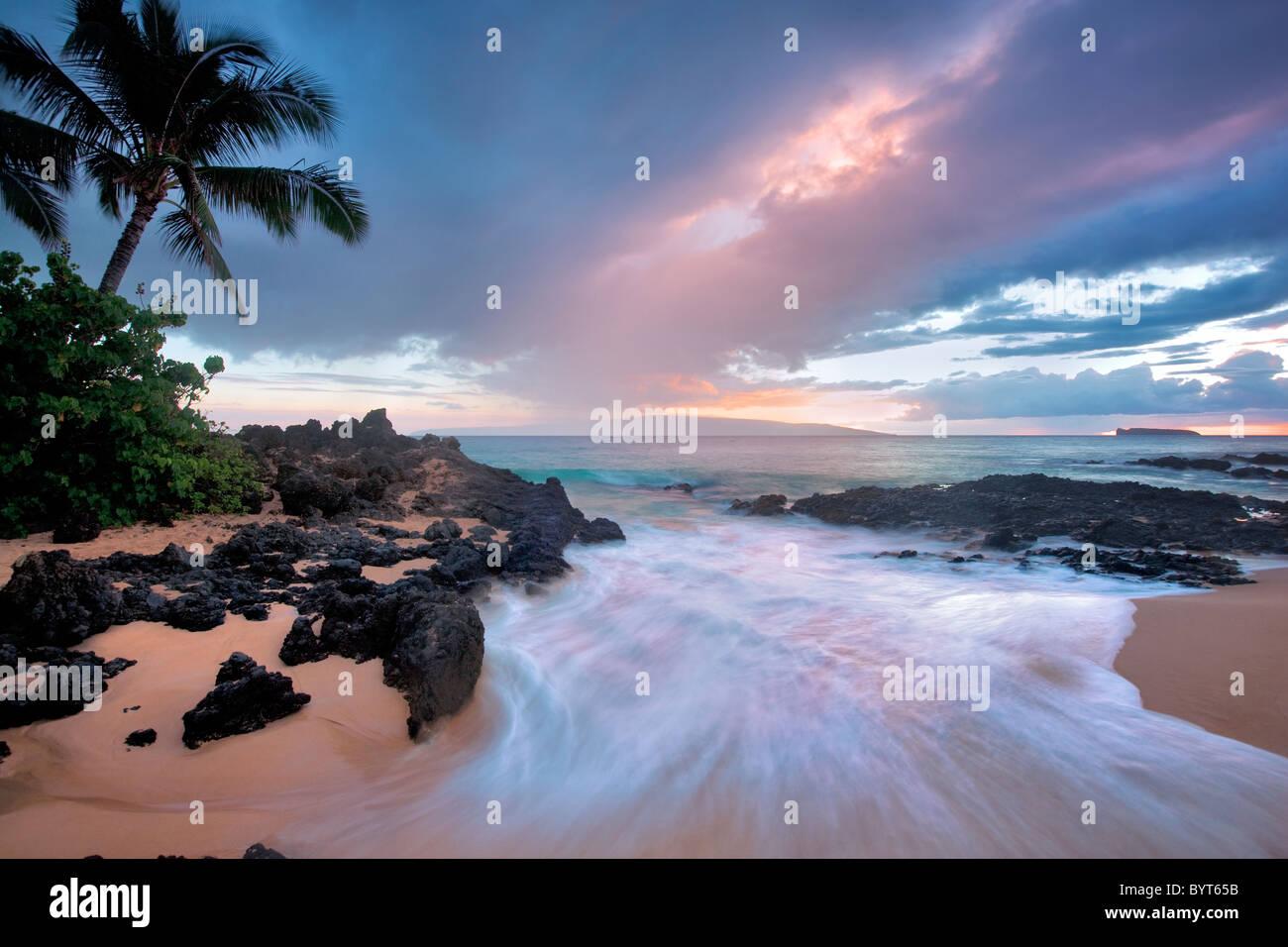 Coucher Soleil nuages et des vagues avec des palmiers. Maui, Hawaii. Banque D'Images