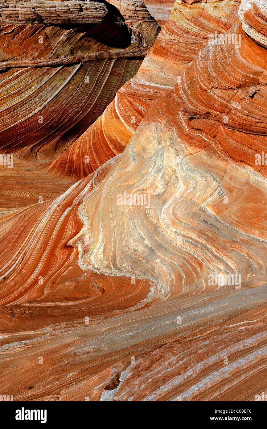 La vague principale formations dans les régions sauvages du Nord et Coyote Buttes Vermilion Cliffs National Photo Stock