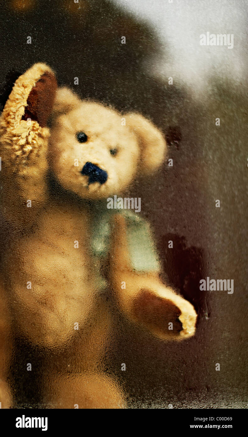 Ours donne de la fenêtre Banque D'Images