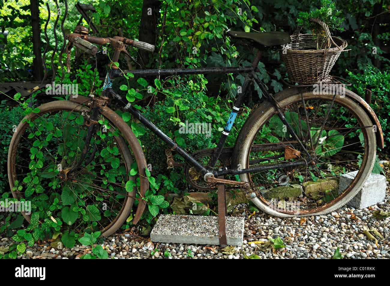 Vieux vélo comme décoration dans un jardin, Ambiance-Jardin ...