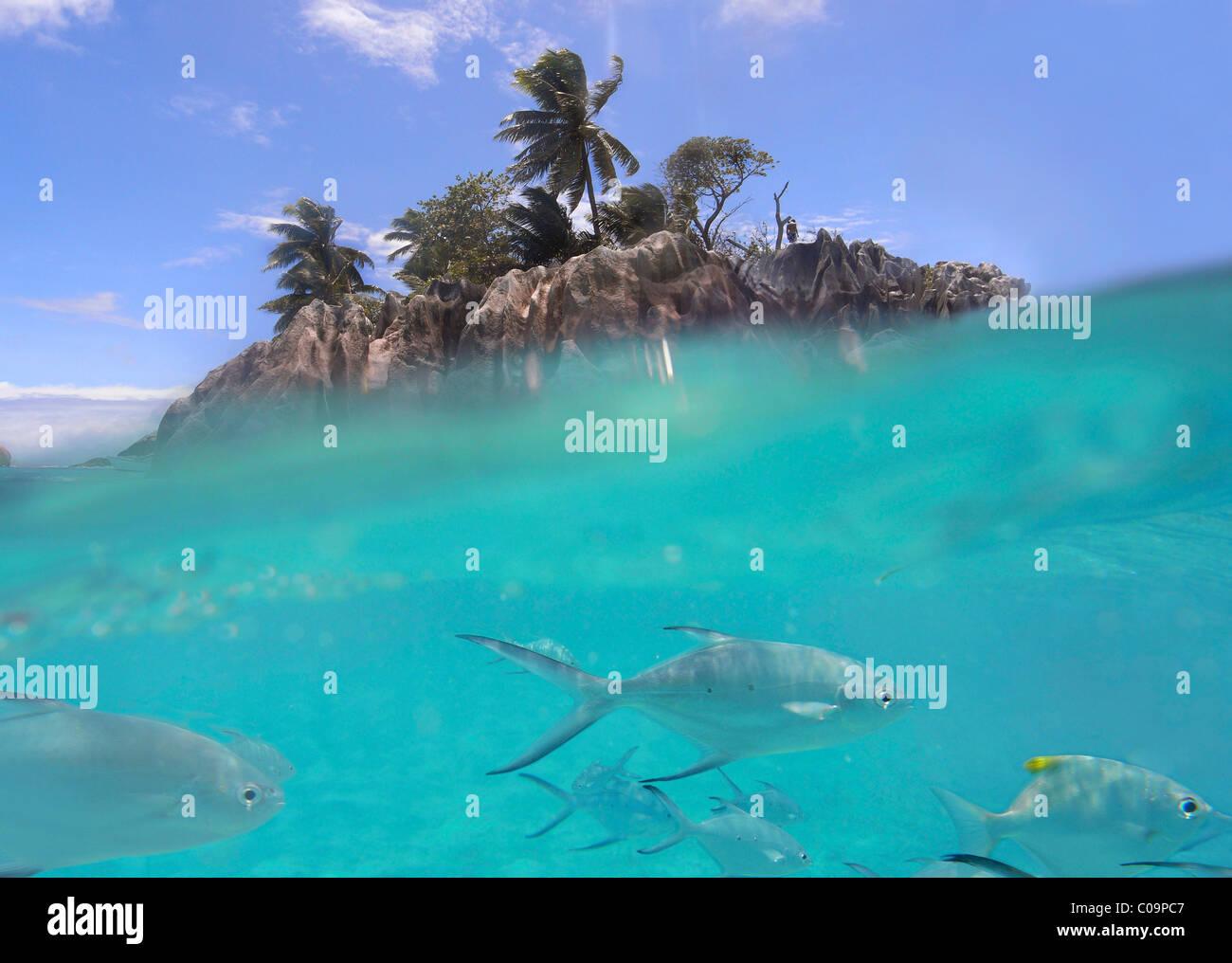 Saint-pierre près de Praslin, les Îles intérieures, les Seychelles, l'Afrique Photo Stock