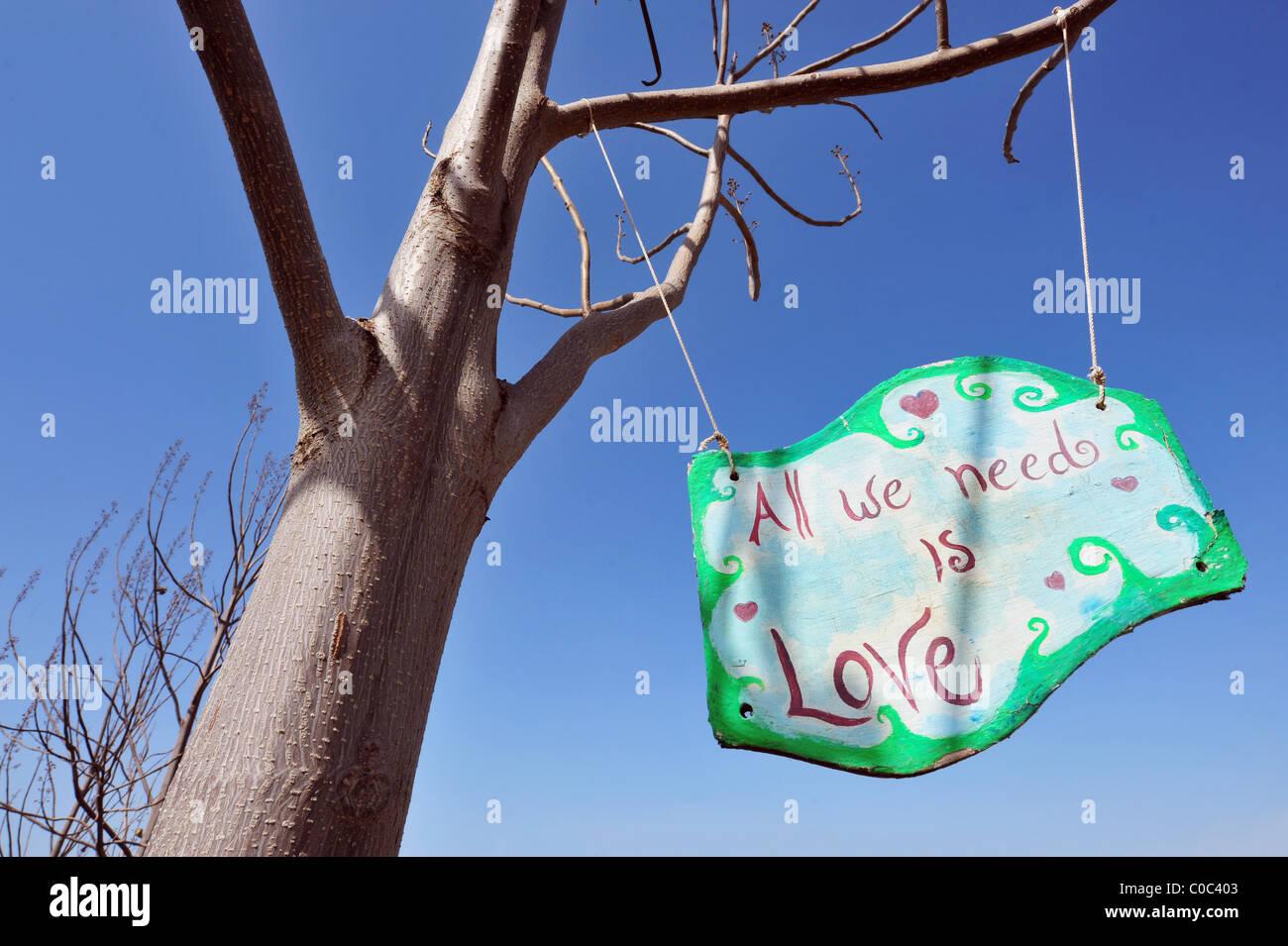 Tous nous avons besoin est amour sign d'un arbre Banque D'Images