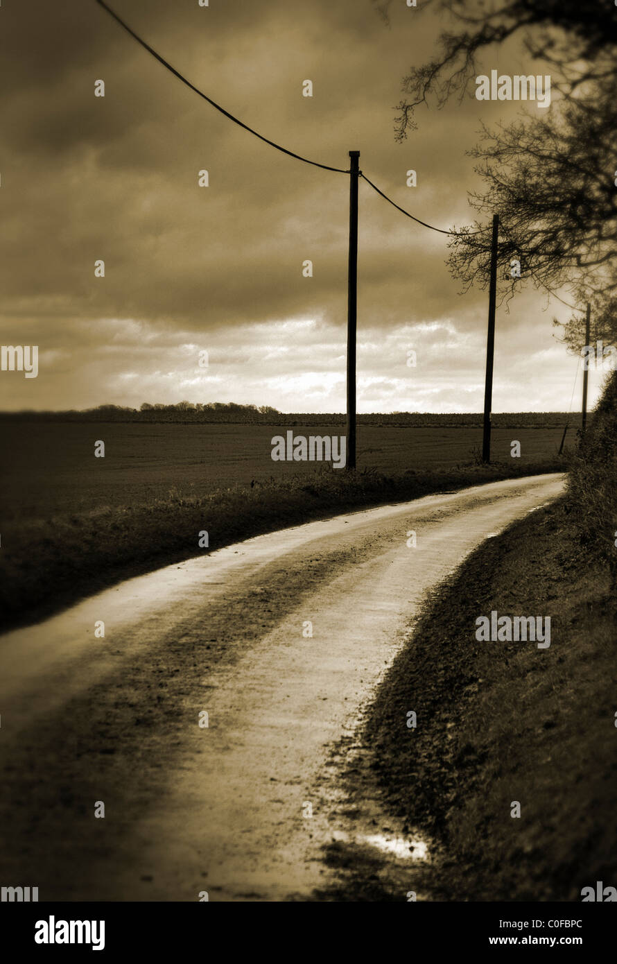 Empty country road Photo Stock