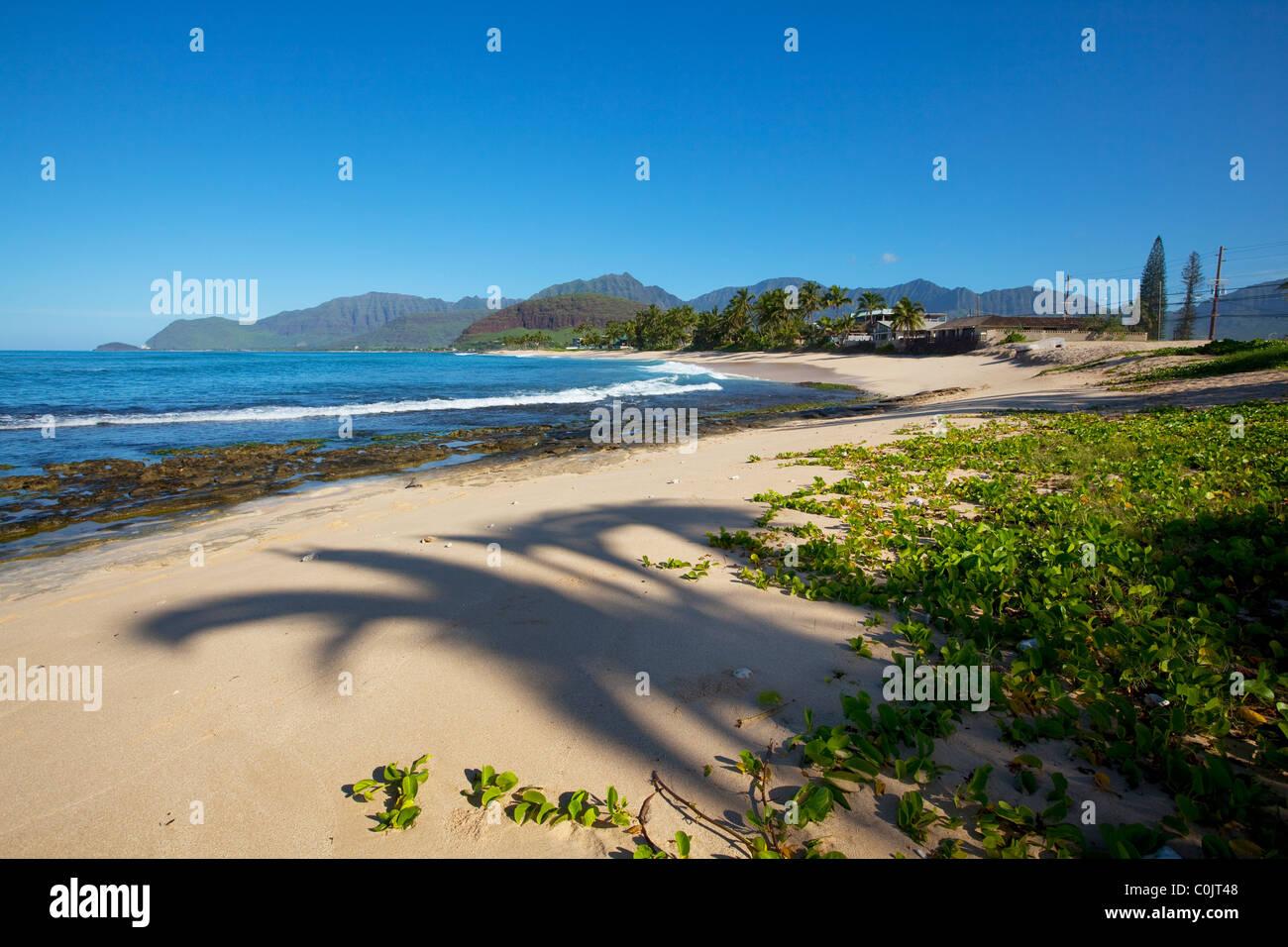 Ulehawa; côte sous le vent; Oahu, Hawaii; plage; plages Banque D'Images