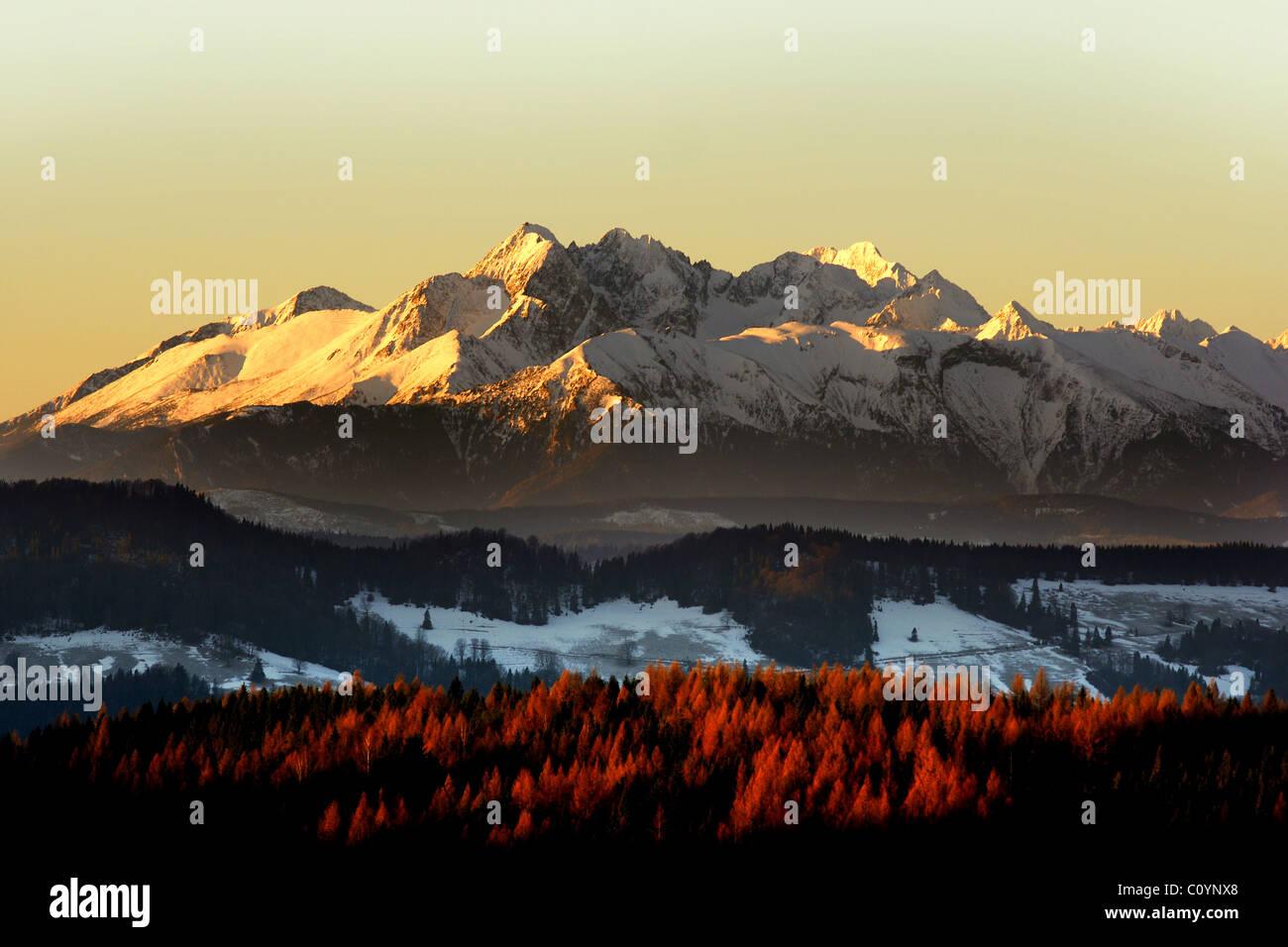 Lever du soleil sur les montagnes de Tatra vu de Radziejowa Beski Sadecki, Pologne dans Banque D'Images