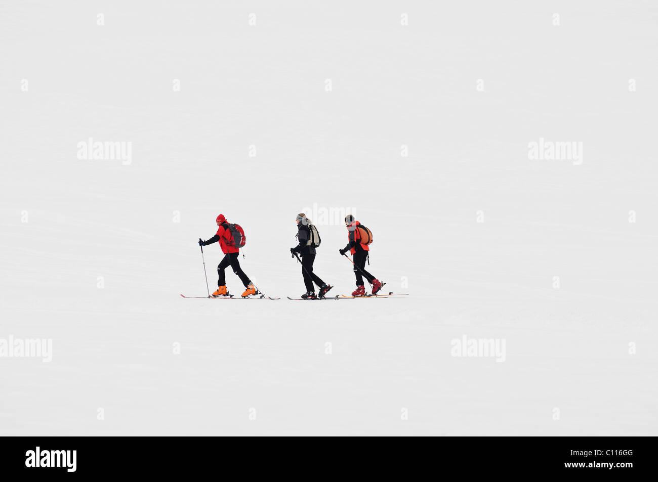 Trois randonneurs à ski Photo Stock