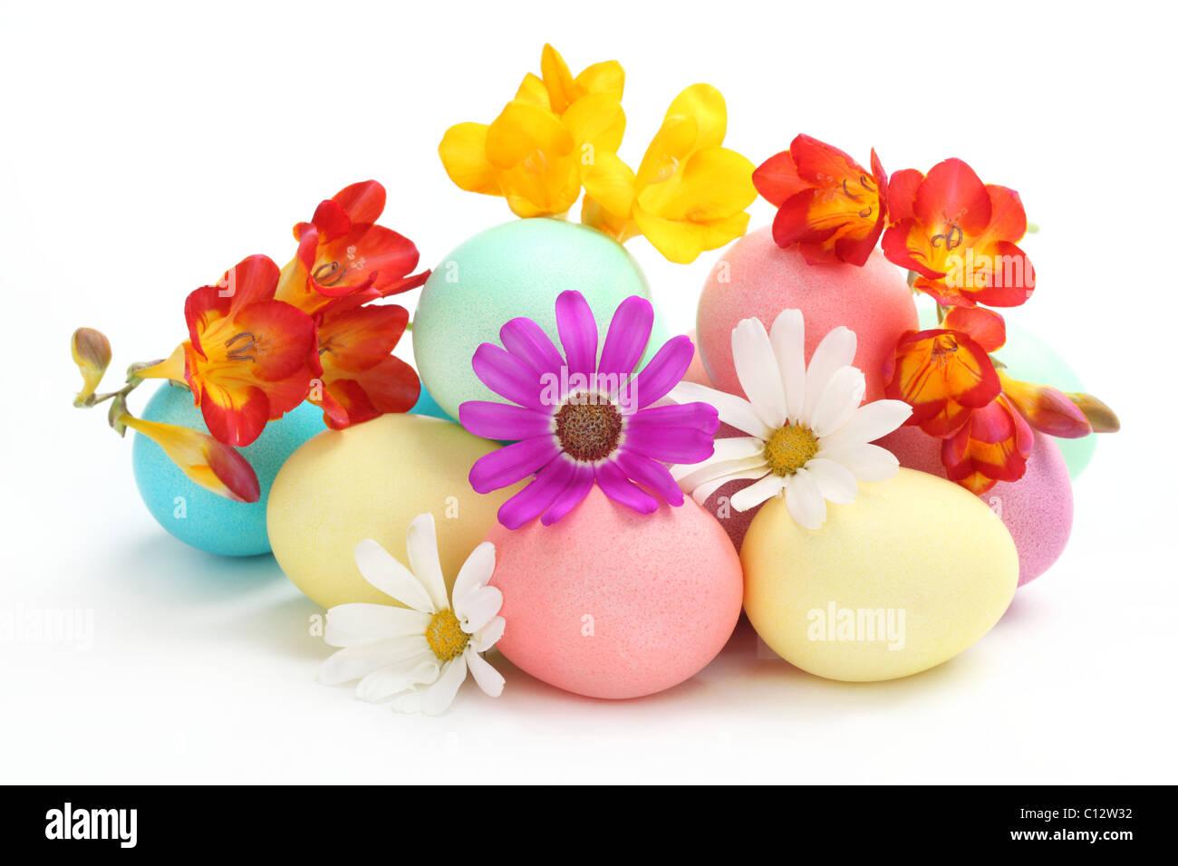Les oeufs de Pâques colorés avec des fleurs de printemps sur fond blanc Photo Stock