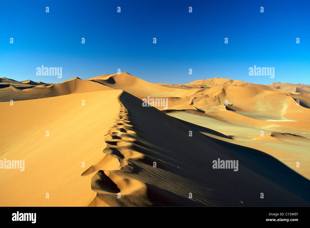 Paysage de dunes, Sossusvlei, Namib-Naukluft National Park, Désert du Namib, Namibie, Afrique Photo Stock