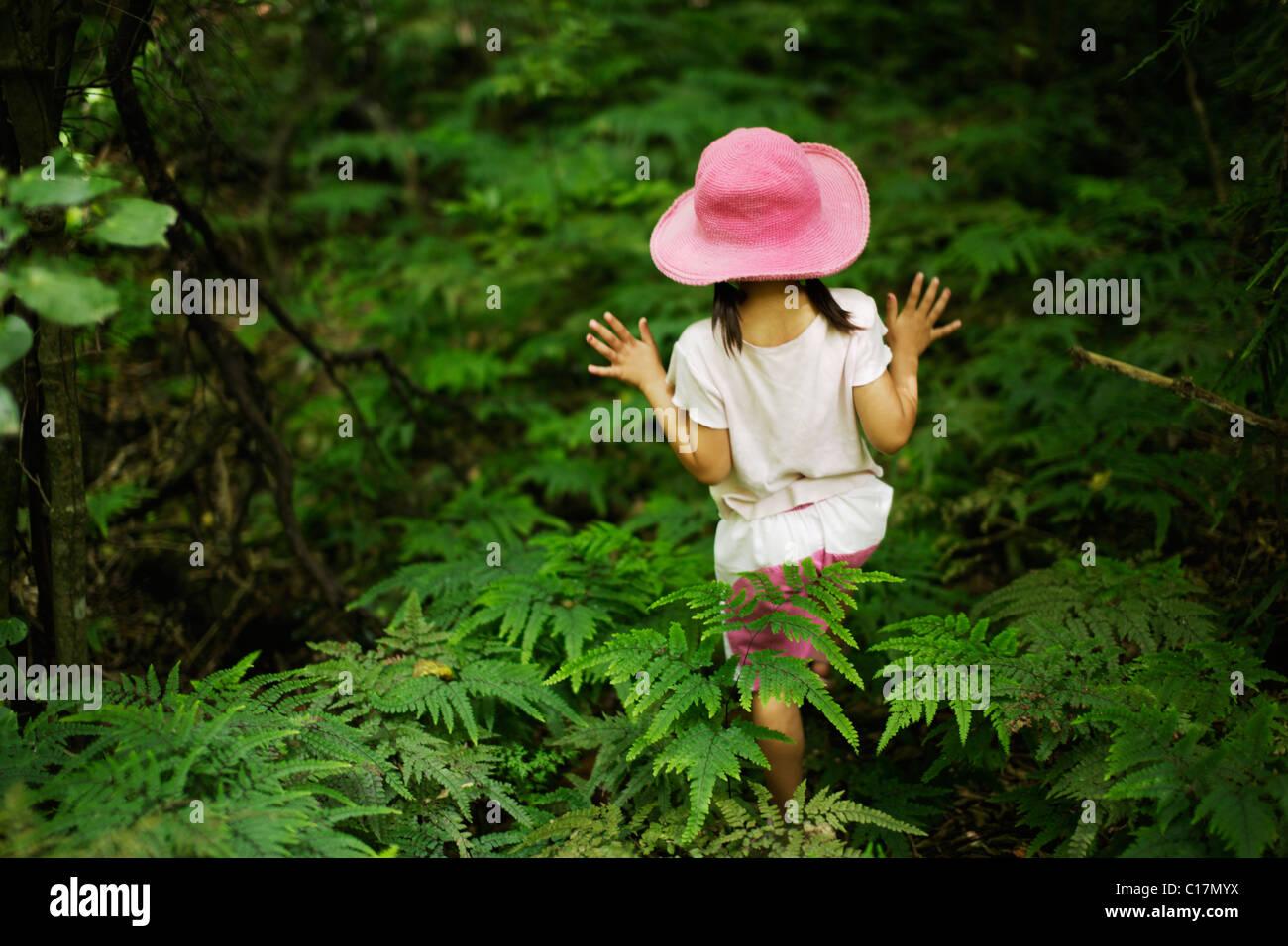 Petite fille de cinq ans se promène dans les fougères dans le bois Photo Stock