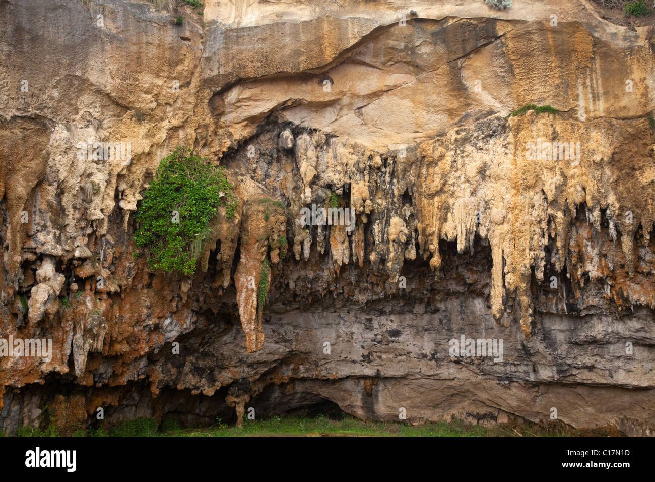 Grotte exposée, Loch Ard Gorge, Parc National de Port Campbell, le long de la Great Ocean Road, Victoria, Australie Photo Stock