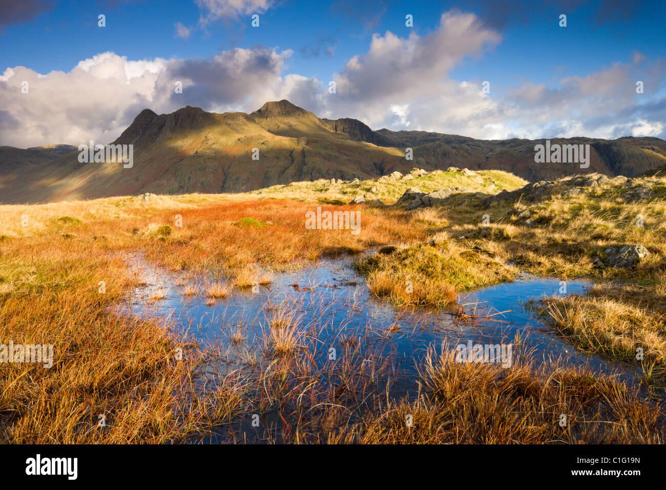 Le Langdale Pikes, Parc National de Lake District, Cumbria, Angleterre. L'automne (novembre) 2010. Banque D'Images