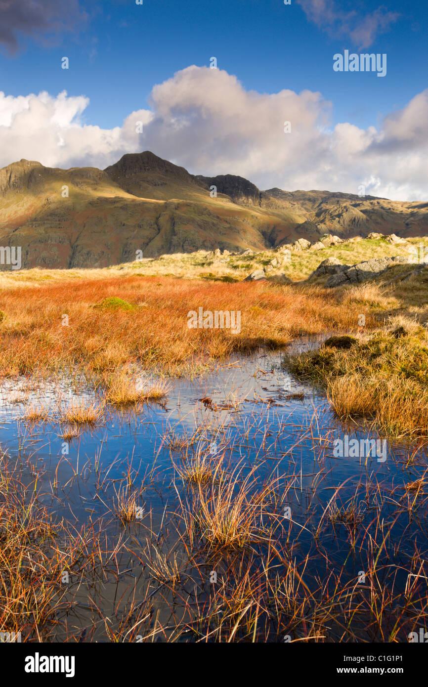 Le Langdale Pikes, Parc National de Lake District, Cumbria, Angleterre. L'automne (novembre) 2010. Photo Stock