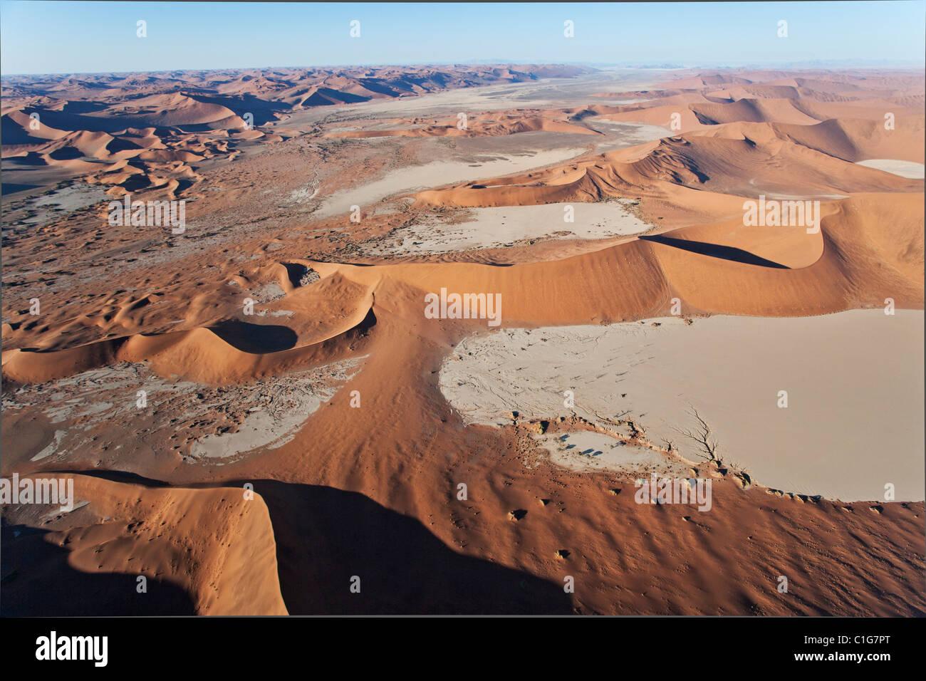 Dans Dead Vlei Sossusvlei dans le désert du Namib. Namib-Naukluft N.P, Namibie Photo Stock