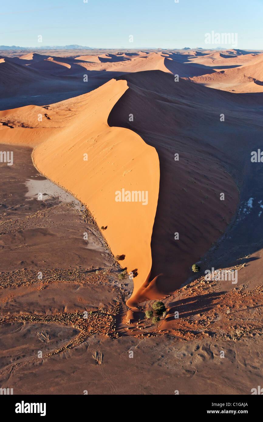 Dunes de sable peuvent atteindre jusqu'à 400 mètres de hauteur. Sossusvlei dans le désert du Namib. Namib-Naukluft. Banque D'Images
