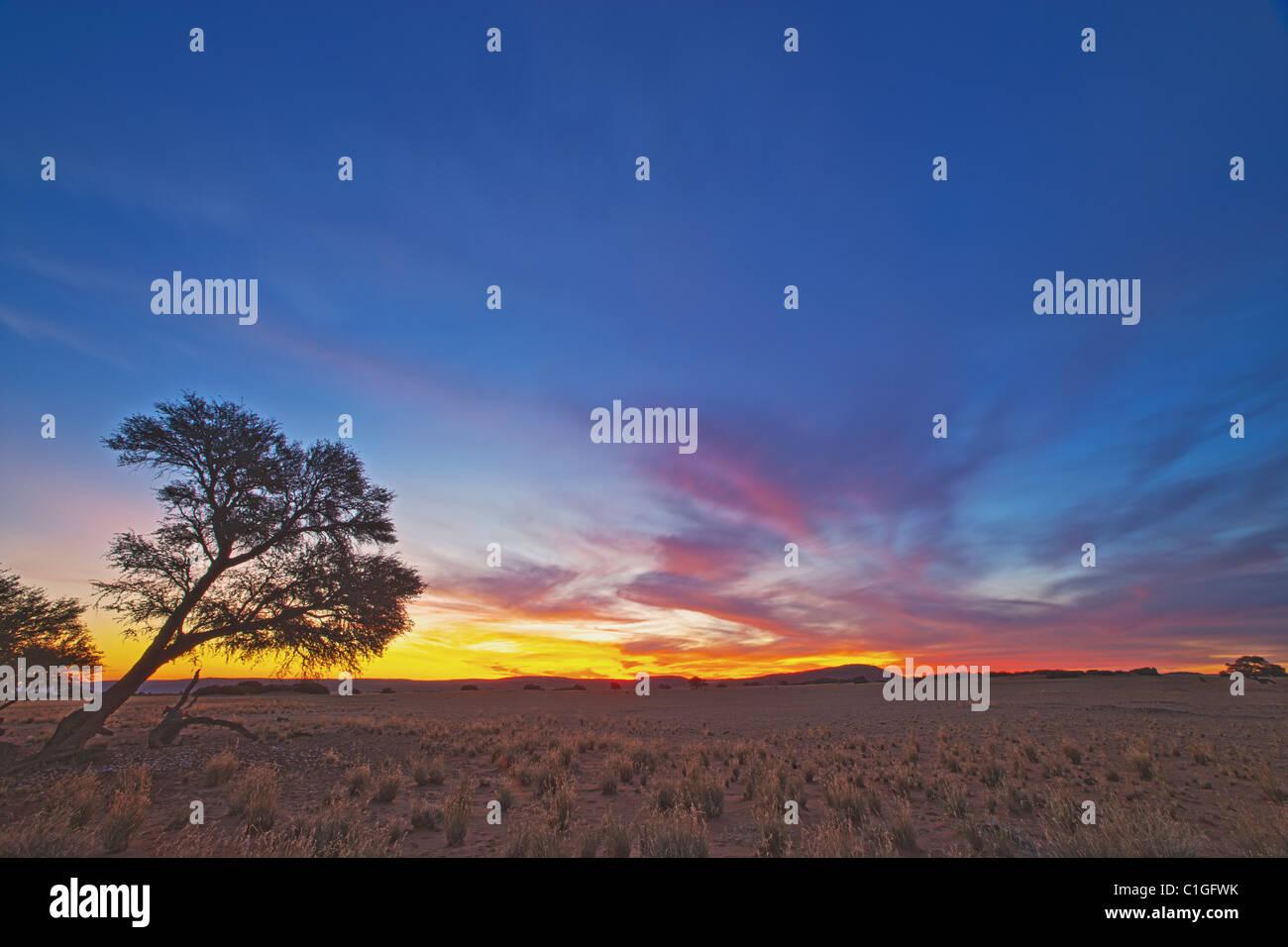 Vue panoramique de la NamibRand Nature Reserve Photo Stock