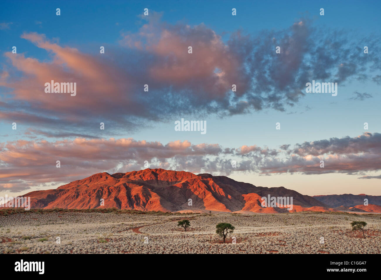 Vue panoramique de la NamibRand Nature Reserve Photo Stock