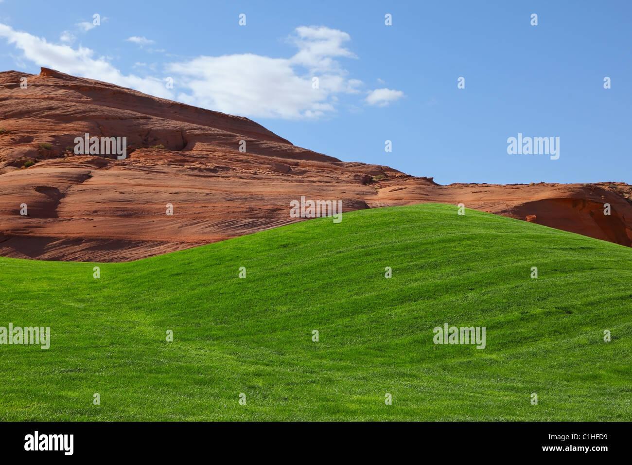 Champ d'un vert lumineux golf Photo Stock