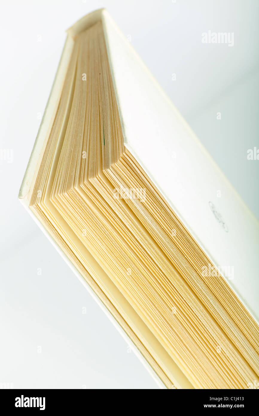 Gros livre Photo Stock