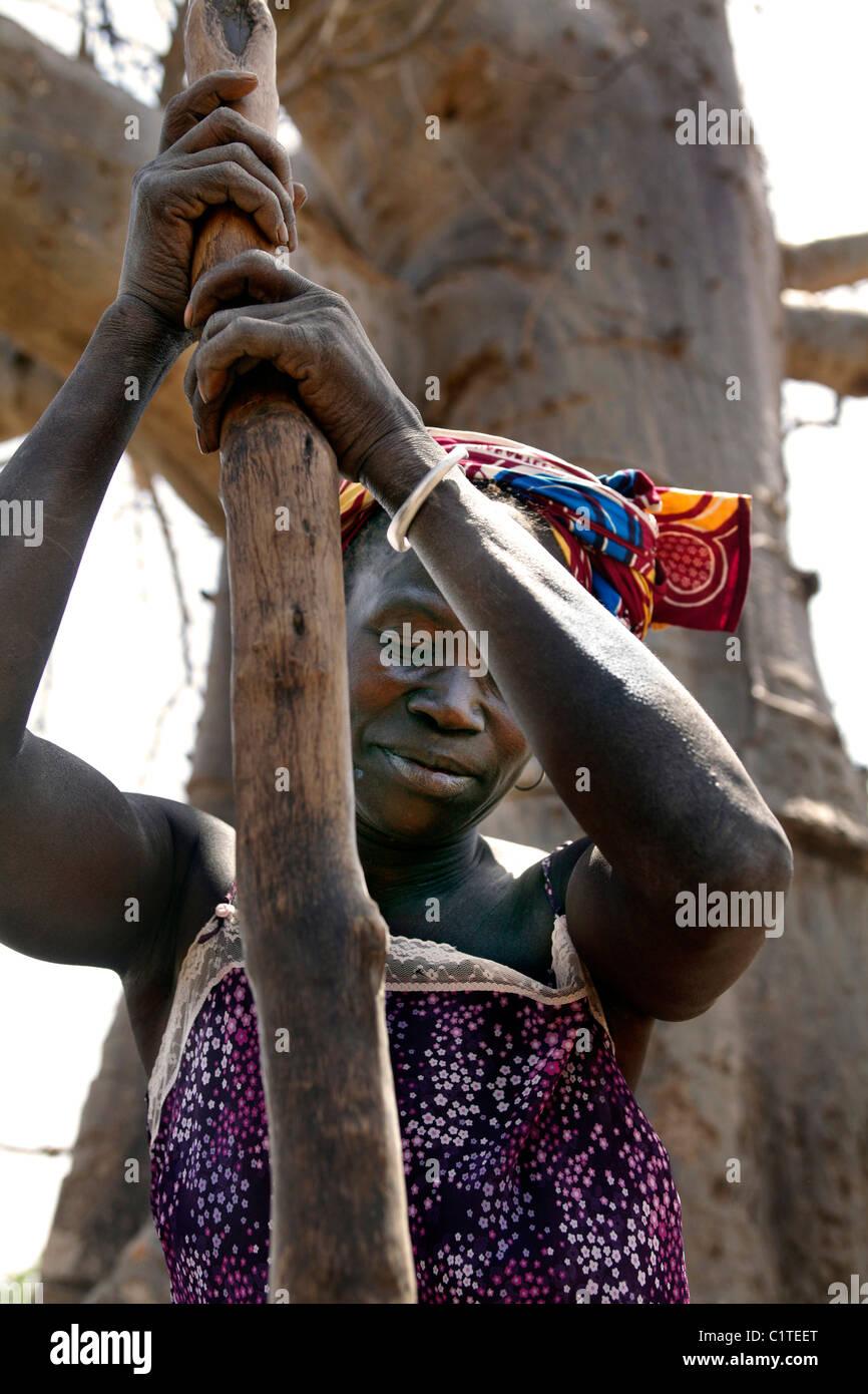 Battre le mil, sorgoum femme. Sénégal Photo Stock