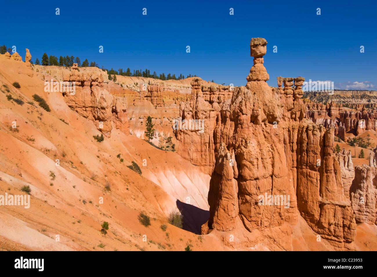 Le marteau de Thor et cheminées de grès dans l'Amphithéâtre de Bryce Canyon Utah USA Etats Photo Stock