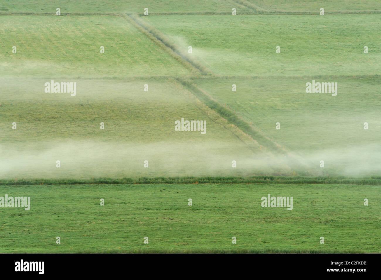 Mist situé bas plus de champs sur le Somerset Levels. Photo Stock