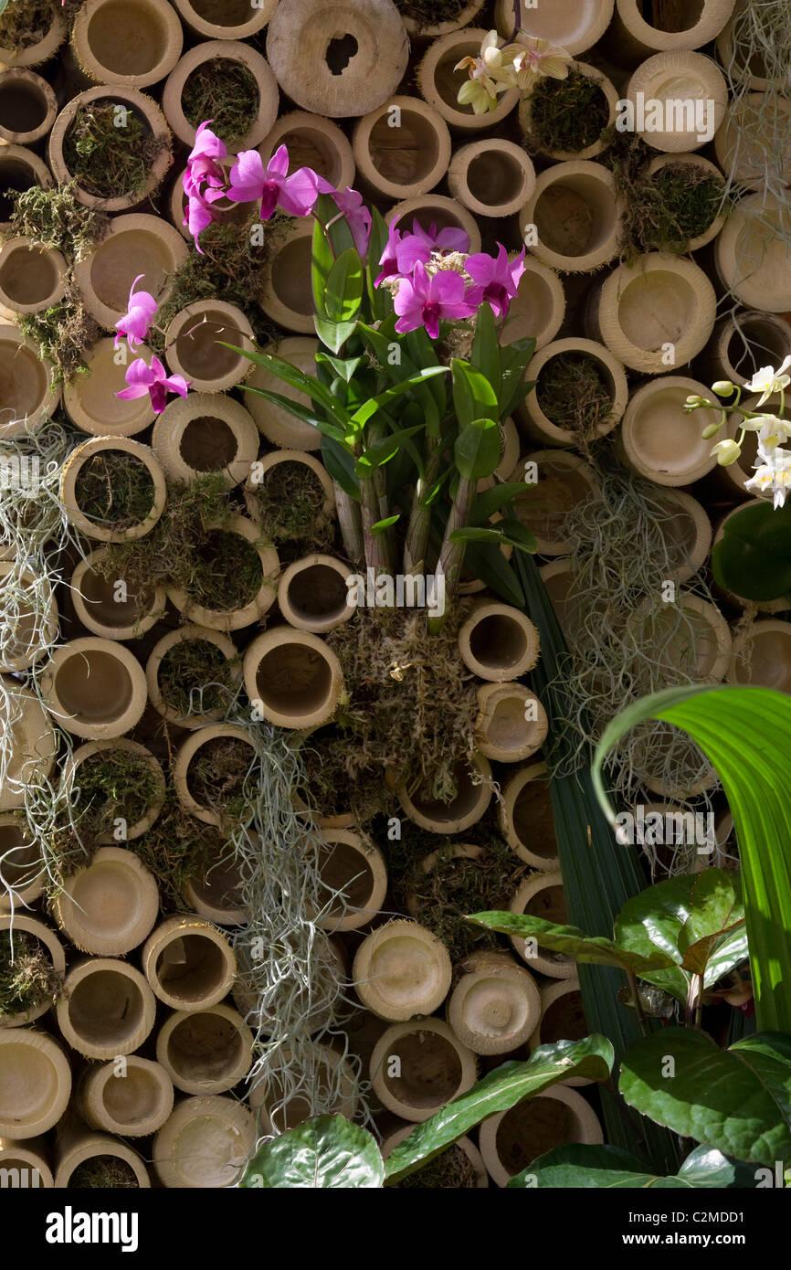 'Thaïlande: Jardin de sérénité', 2009 Hampton Court Palace Flower Show, en Angleterre. Photo Stock