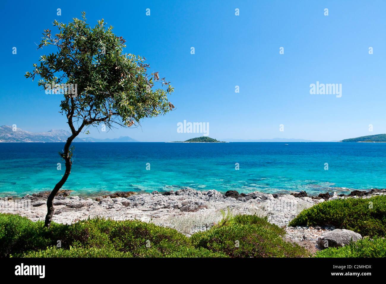 L'île de Korkula à Badija (Croatie). Photo Stock