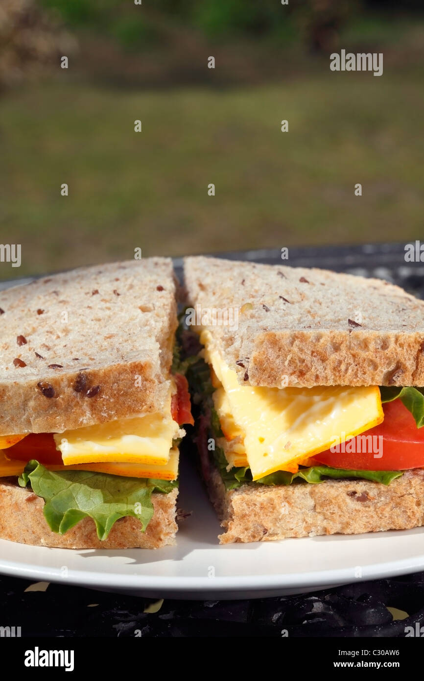 Sandwich au fromage Photo Stock