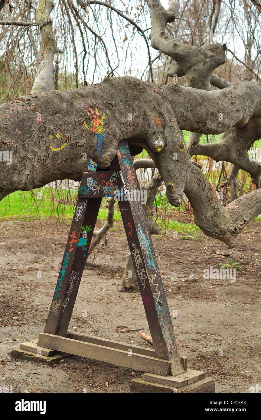 En vertu de l'appui métalliques un arbre tombé. Photo Stock