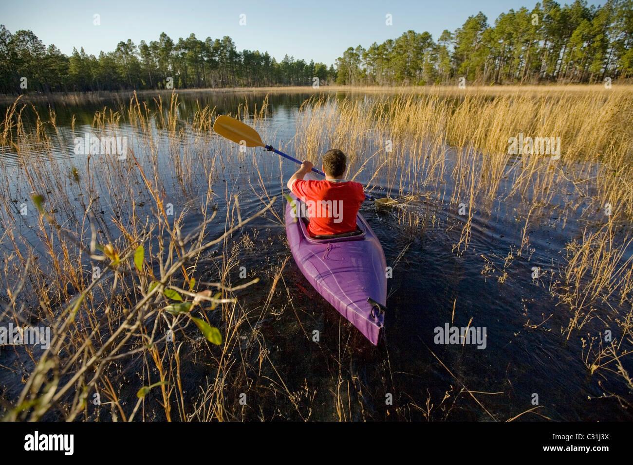 Un homme à travers une partie de kayaks le Marais Vert dans le sud-est de Caroline du Nord. Photo Stock