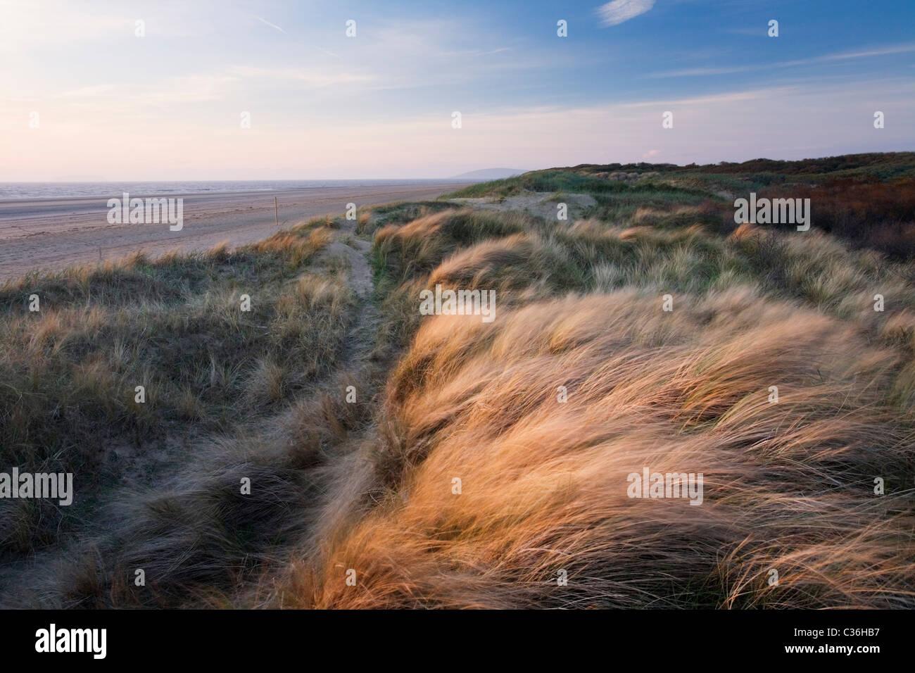Berrow Brean Down Dunes avec au loin. Le Somerset. L'Angleterre. UK. Banque D'Images