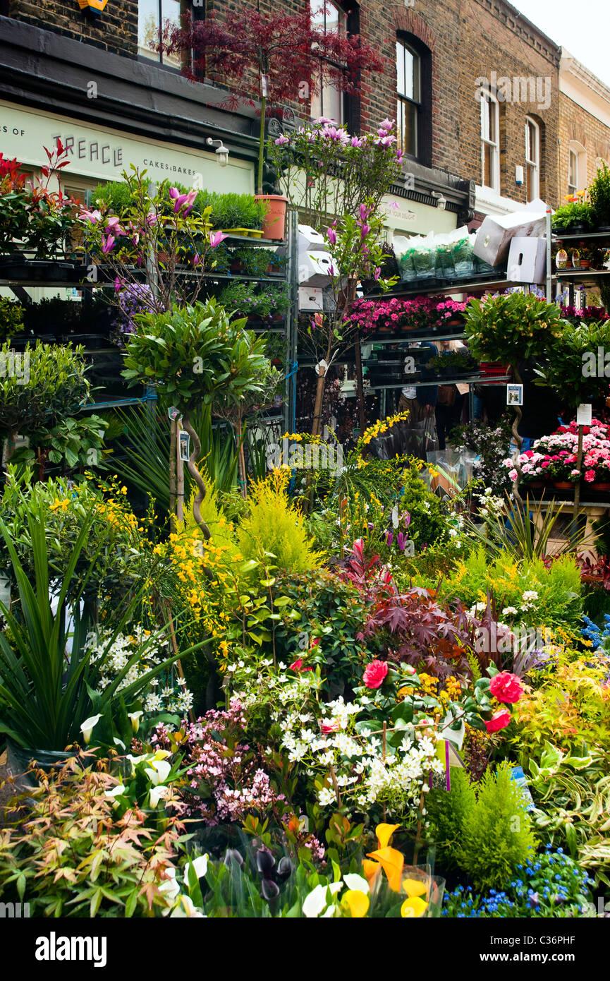 Columbia Road Flower Market dans l'East End de Londres Photo Stock