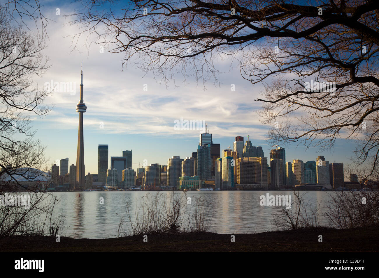 Le centre-ville de Toronto Skyline, y compris la Tour CN et le Centre Rogers, comme on le voit dans la fin d'après-midi, de l'île Centre Banque D'Images