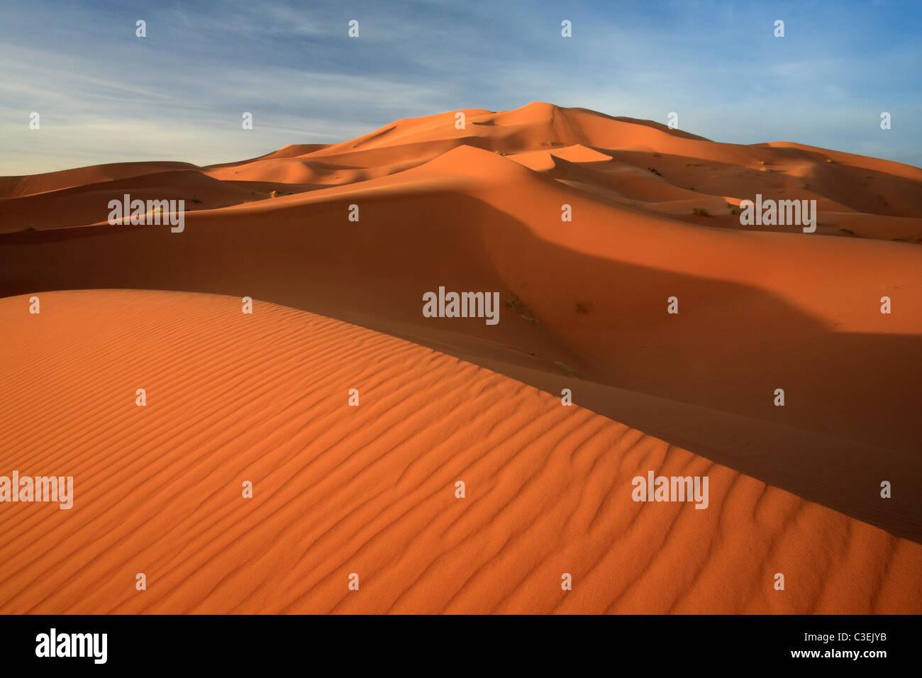 Tôt le matin, la lumière sur les énormes dunes de l'Erg Chebbi près de Merzouga au Maroc Photo Stock