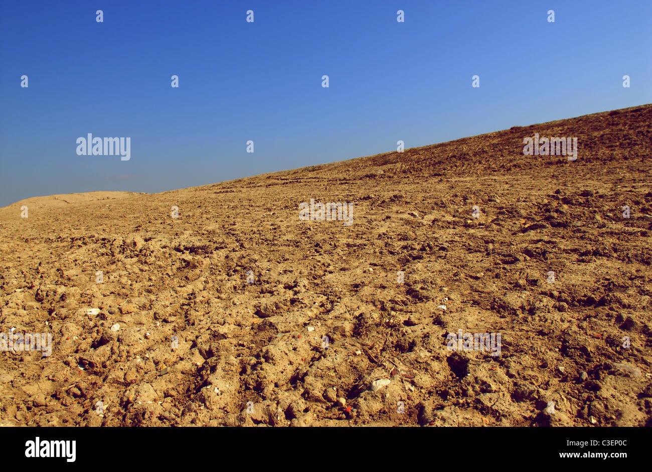 Paysage désertique Photo Stock