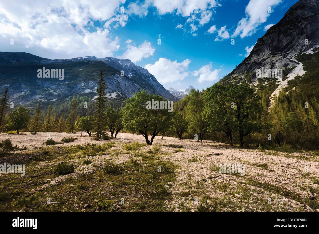 Autriche, Tyrol, vue de paysage avec montagnes en arrière-plan Banque D'Images