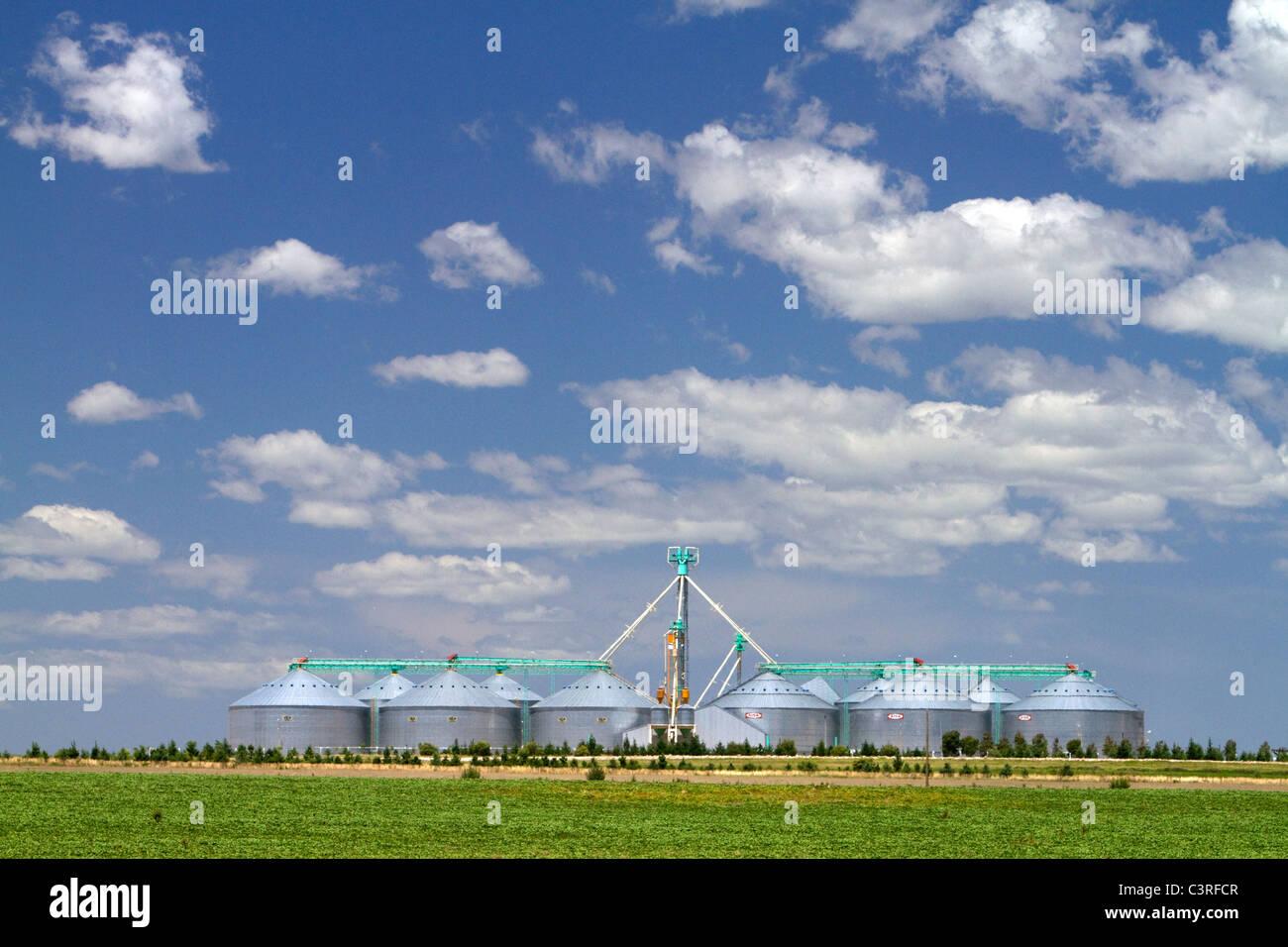 Les silos à grains et des terres agricoles sur les pampas de l'Argentine. Photo Stock
