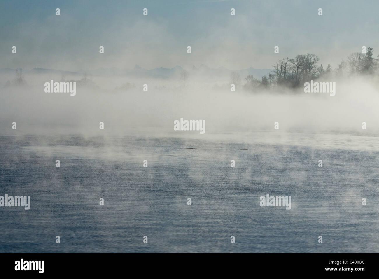 Un endroit au début de l'hiver brouillard sur le fleuve Fraser. Port Coquitlam, BC, Canada. Banque D'Images