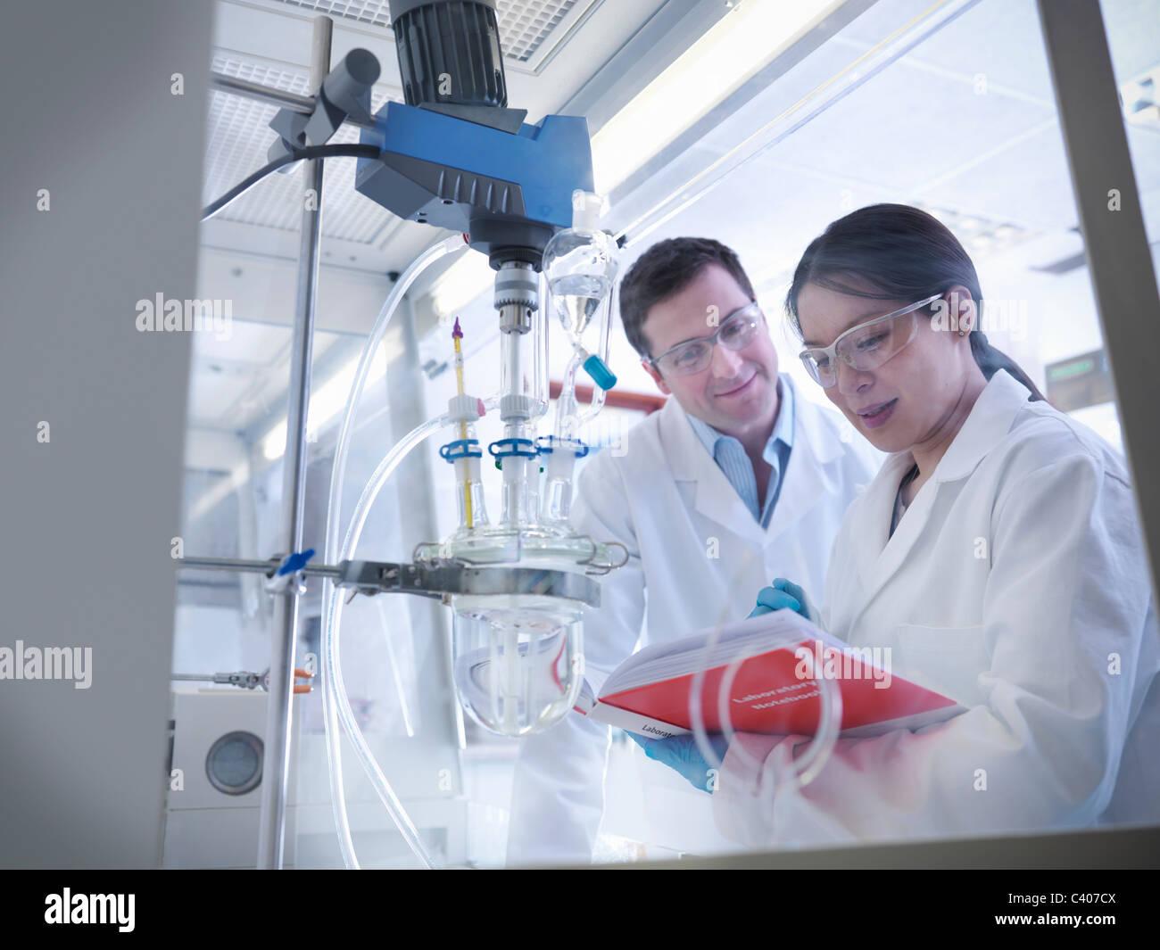 Les scientifiques avec l'expérience en laboratoire Photo Stock