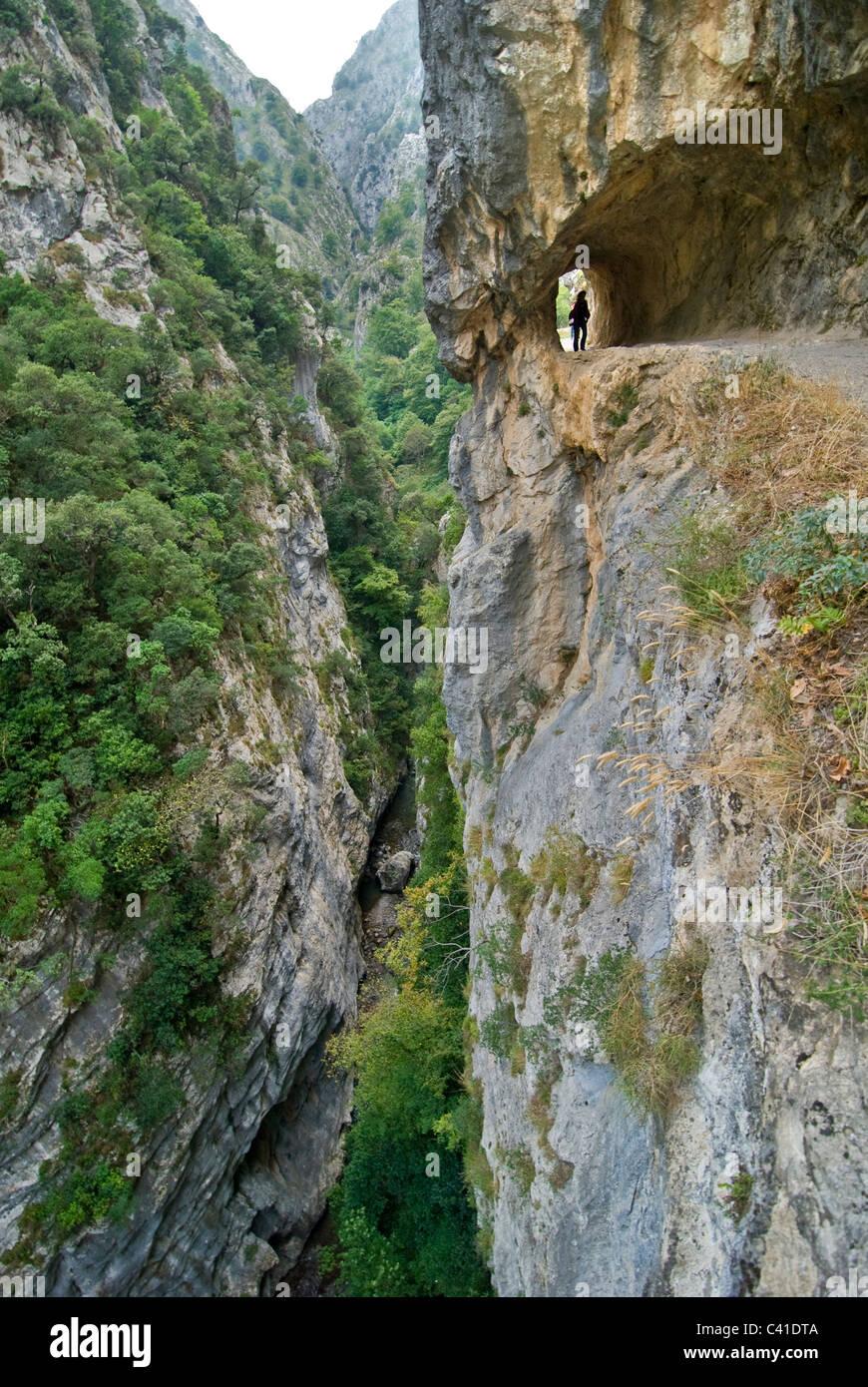 Walker sur le sentier spectaculaire dans la Garganta del Cares, près de Caïn. Picos de Europa, les Asturies. Photo Stock
