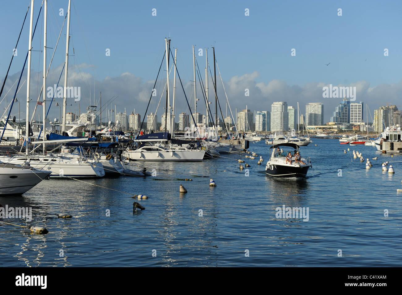 L'URUGUAY , bain de mer, port de Punta del Este avec location de Photo Stock
